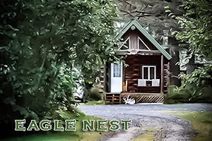 Eagle's Nest Cabin