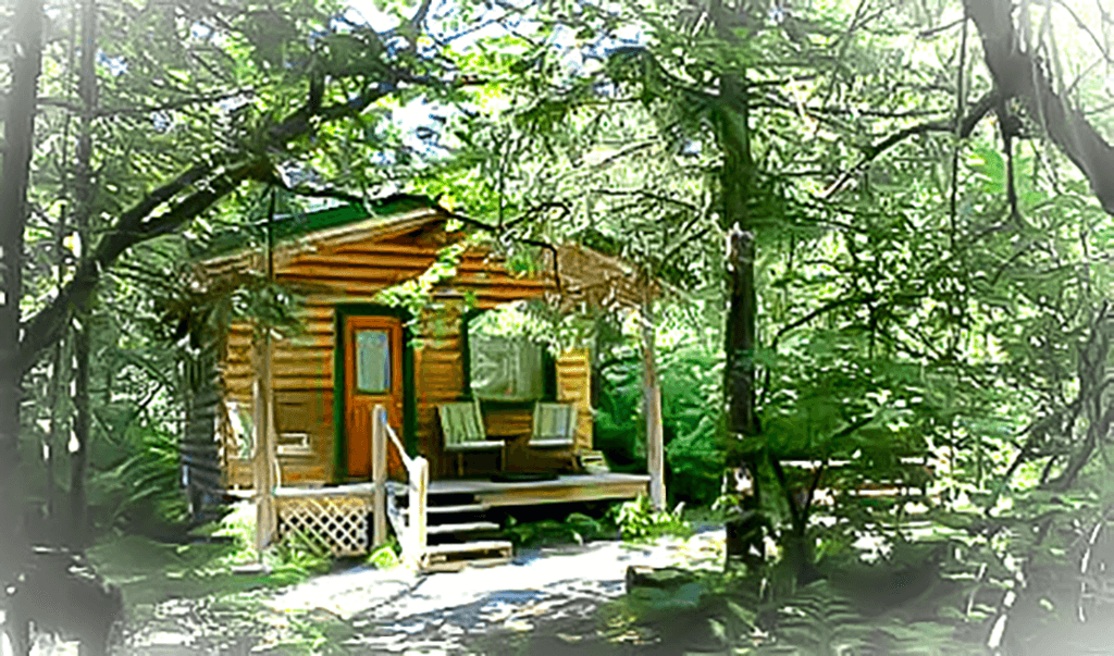 Spring Cabin at Alaska Creekside Cabins in Seward, Alaska